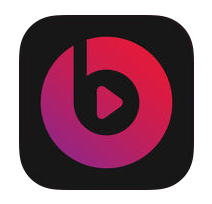 Beats Music Icon